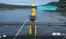 AKVA group lead the way in aquaculture with movie made by Salt Pixel